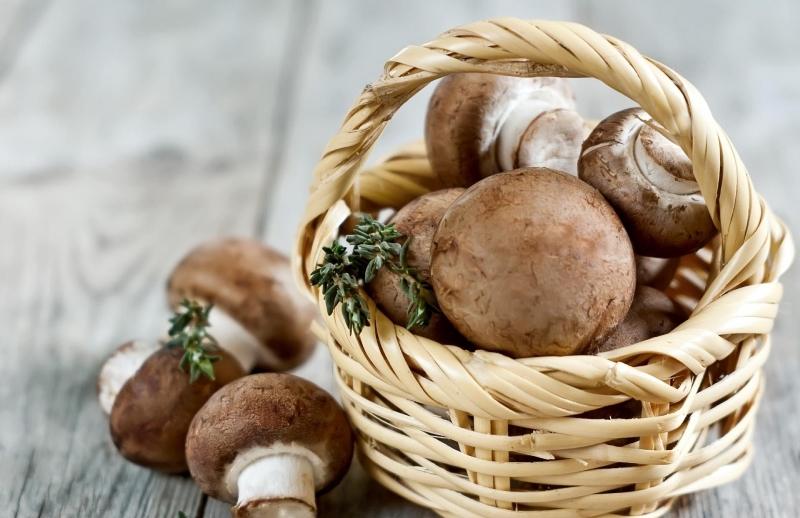 Можно ли кормящей маме есть грибы