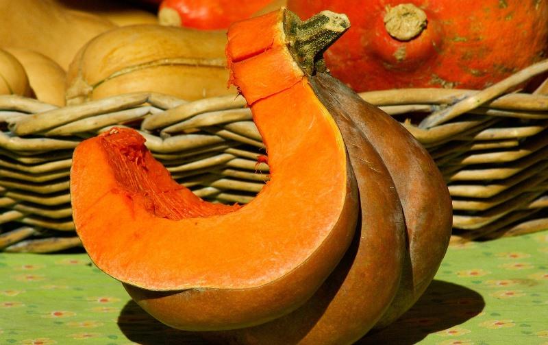 Польза тыквы при грудном вскармливании и возможный вред
