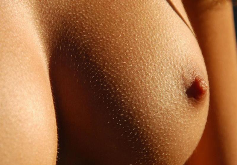 Строение женского соска